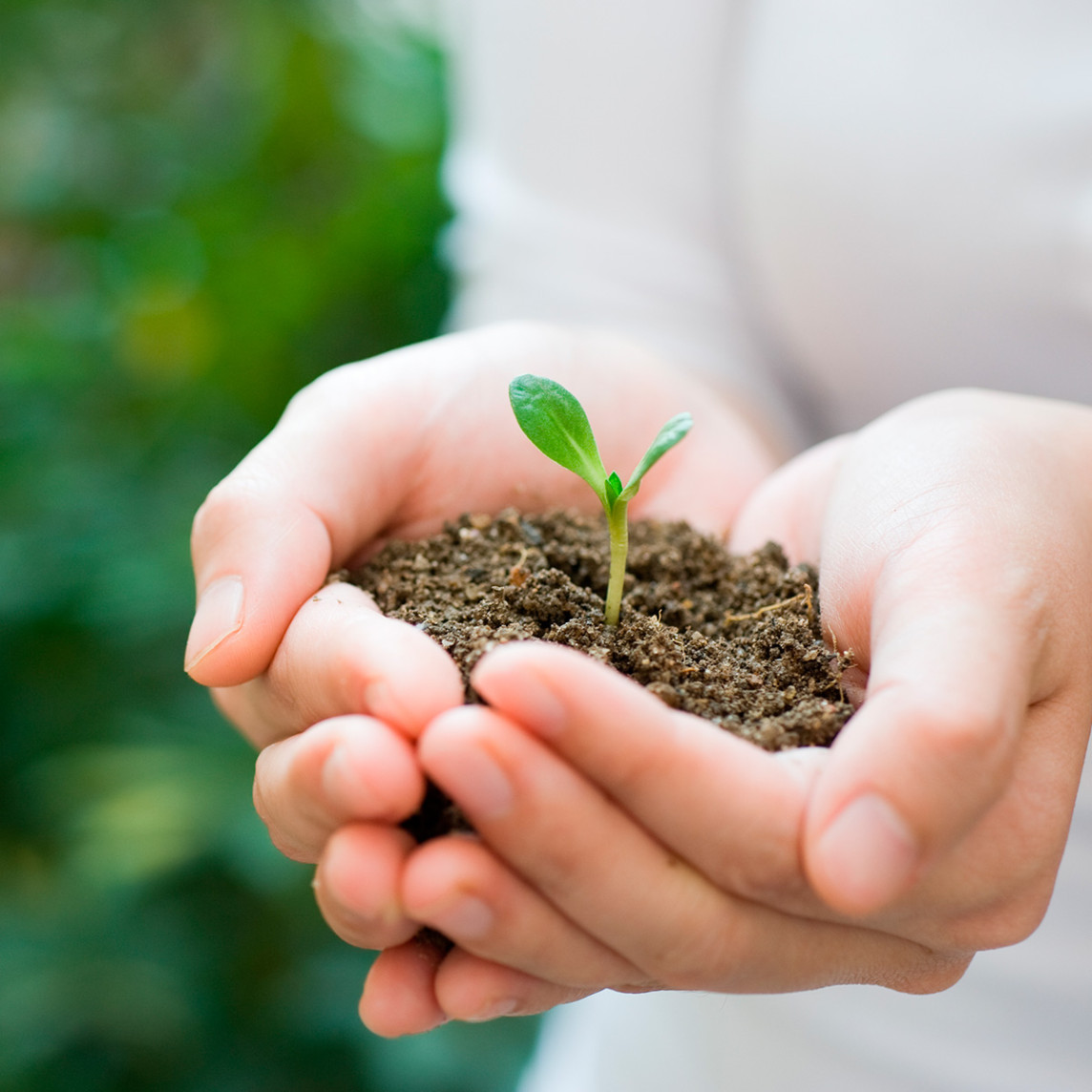 27-medio-ambiente-prioridad